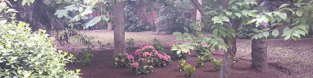 Txilum Jardines